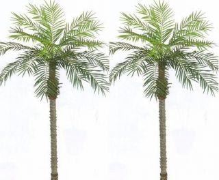 ARTIFICIAL 7 PHOENIX PALM TREE PLANT POOL PATIO TROPICAL