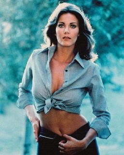 LYNDA CARTER SEXY BARE MIDRIFF COLOR 36X24 POSTER PRINT