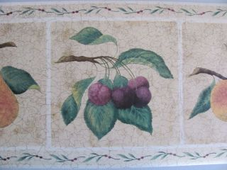 CRACKLE FRUIT Tuscan Style Country Theme Kitchen Prepasted WALLPAPER