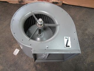 Dayton 382434 17 Squirrel Cage Blower Assembly 19.5 Diameter 12