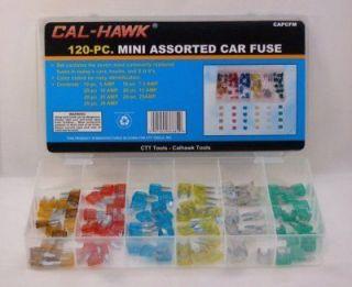 120 pc Mini Blade Car Fuse Assortment Set ATM Type Kit Auto Truck SUV