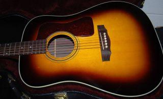 NEW Guild ® D 50 Standard Acoustic Guitar   Sunburst