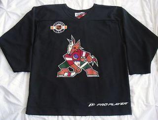 Phoenix Coyotes Vintage NHL Center Ice Pro Player Practice Jersey