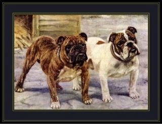 English Print Bulldog Bull Dog Buddies Art Picture