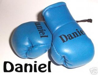Baby Blue Mini Boxing Gloves printed with Boys names