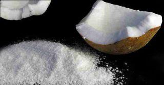 Instant Coconut Milk Powder, 10.5 oz (300g)