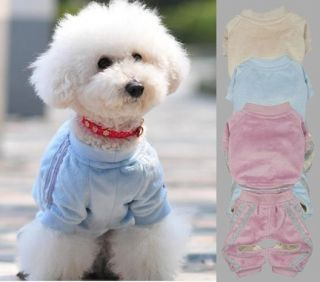 Pet Sports Clothing Dog Velour Suits clothes Coat and Pants Set