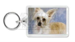 Chinese Crested Powder Puff Dog Photo Keyring, AD CHC3K