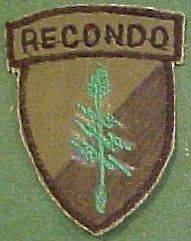 5th Special Forces Group Recondo Patch