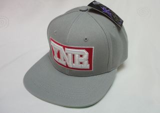 Young & Reckless Y&R Mens H113 COLLEGE BLOCK Snapback cap hat One