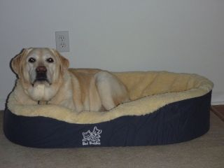 extra large dog bed in Beds