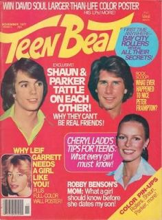 TEEN BEAT Shaun Cassidy LEIF GARRETT POSTER Starsky & Hutch CHARLIES