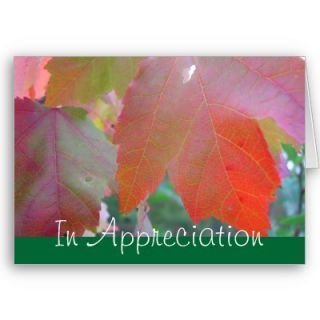 Pastor Appreciation Card from Zazzle