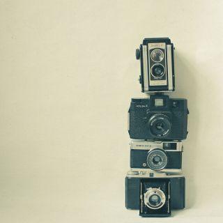 Camera Love Art Print  Print Shop