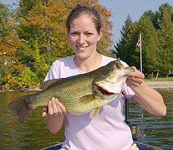Live bait will always be effective for catching fish. By using the