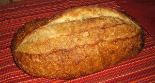 Authentic San Francisco Sourdough Bread Starter