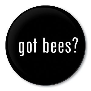 got bees beekeeping pin honey bee hive equipment badge time