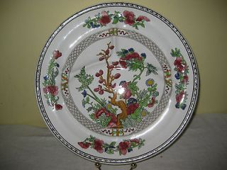 BEAUTIFUL VINTAGE BOOTHS INDIAN TREE DIVIDED DINNER PLATE