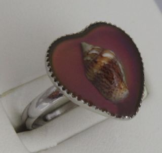 amazing shell heart mood ring brand new with mood chart