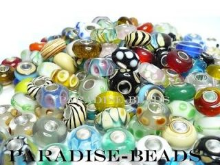 20 European Beads Silver Core Murano Lampwork Glass Charm Lot