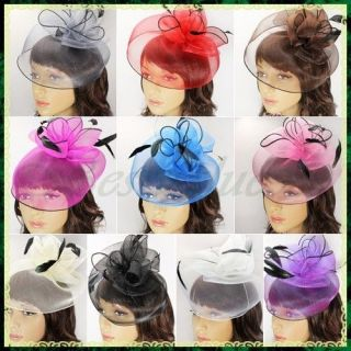Mesh Cocktail Party Wedding Prom Feather Veil Hat Fascinator Hair Clip
