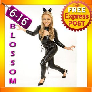 9129 Catwoman Hero Superhero & Villain Ladies Party Hens Fancy Dress