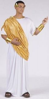 Adult CAESAR Roman Emperor Greek God Toga Mens XL or XXL Costume