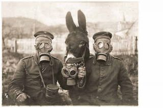 wwi german soldiers with war horse gas masks ww1 from