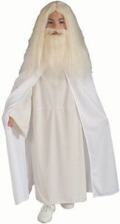 child s lord of the rings gandalf halloween costume lg