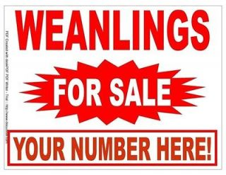 Newly listed Weanlings For Sale Signs Horses Equine Yard Road