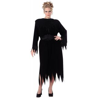 Wanda the Wicked Witch Plus Size Adult Womens Black Halloween Costume