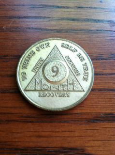 Alcoholics Anonymous AA 9 Months Brass Metal Chip Coin Token Medallion