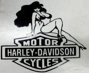 Harley Davidson Logo Vinyl Sticker Decal 6 Wide Pick Color