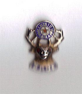 Vintage Elks BPOE Fraternal Member Lapel Pin Enameled
