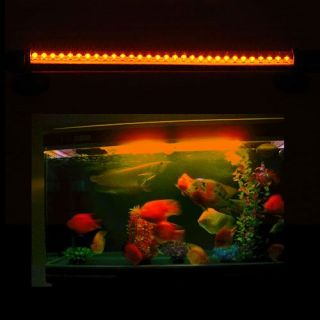 Aquarium Fish Tank Home Wall Decorate LED Light Make Night Vision