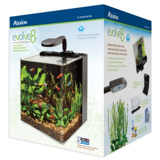 Aqueon Evolve 8 gallon LED All inclusive Desktop Aquarium Kit
