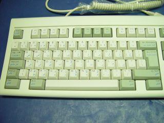 Sejin Electron English Arabic Keyboard SKR 1032B AR1
