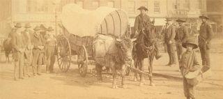 C1880s Asheville Lindsey Cabinet Photo Wcovered Wagon Black Men