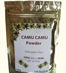 CAMU CAMU EXTRACT 4:1 POWDER ~ B COMPLEX ~ AMINO ACIDS