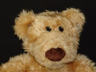 Gund Pottery Barn Kids Plush Brown Bear Clancy Pbk Toy Stuffed Animal