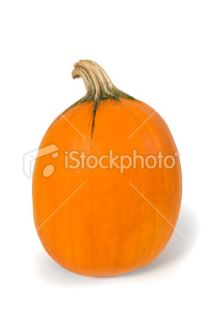 stock photo 7127642 pumpkin clipping path