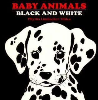 Baby Animals Black and White by Phyllis L. Tildes 1998, Board Book