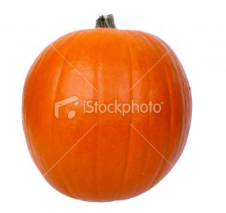 stock photo 4246899 pumpkin clipping path