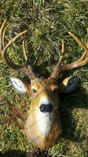 Newly listed BUCK DEER HEAD 8 POINT LARGE WHITETAIL MOUNT FAUX