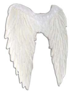 Real Feather White Angel Wings Fallen Angel Fairy Fancy Dress Outfit