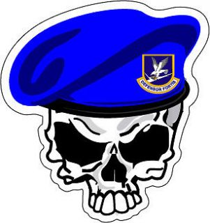 sticker usaf air force security forces skull more options select