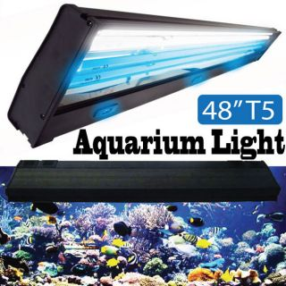 aquarium led