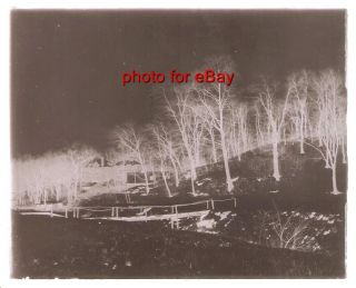Early 1900s Glass Plate Negative Harpers Hollow Oak Lane Section of