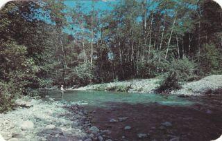 1953 Redwood Lodge & Camp Big Sur, CA Vintage Postcard