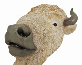 White Buffalo Head Mount Wall Statue 9 Inch Bison
